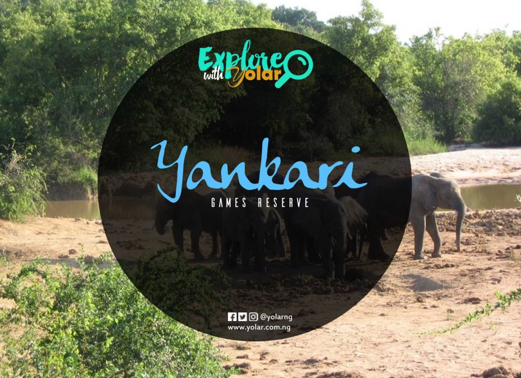 Explore with Yolar to Yankari